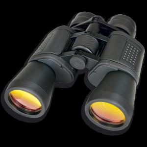 Binocular Martinez Albainox con Lente de Rubí 10-30 Zoom 50 Mm Color Gris Incluye Funda 33150