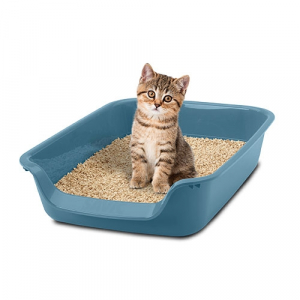 Bandeja WC para gatos